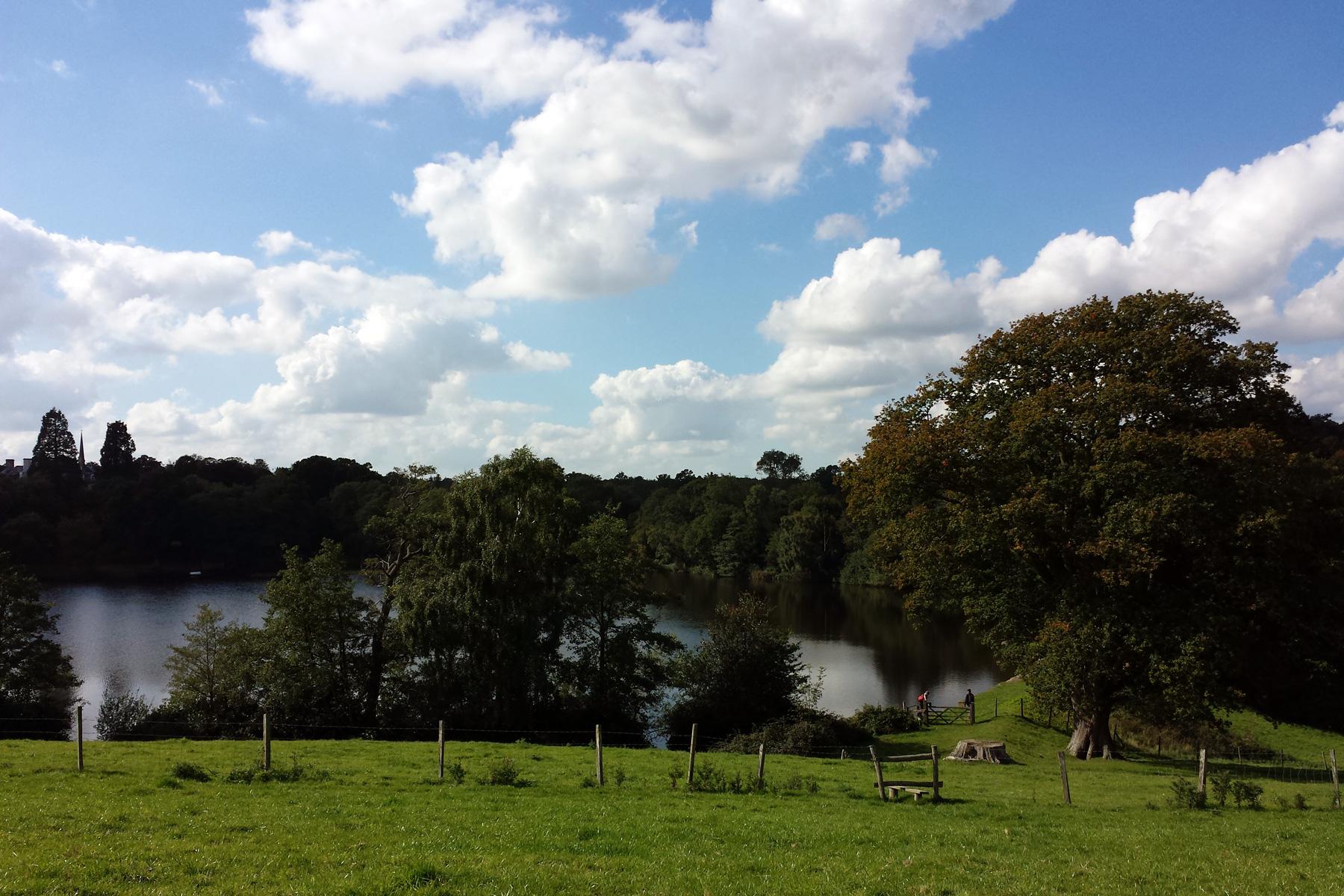 Bedgebury Great Lake