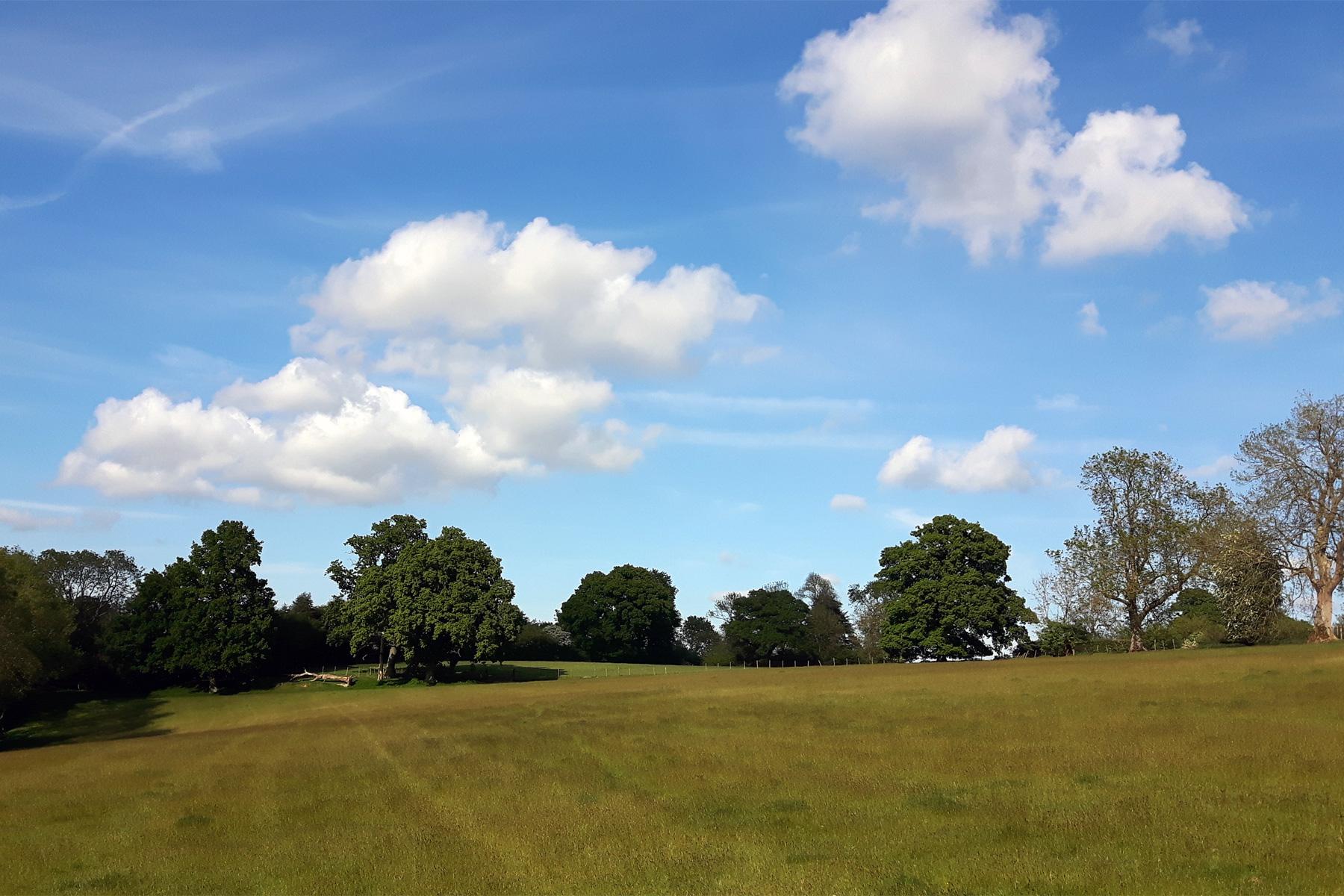 Scotney Estate
