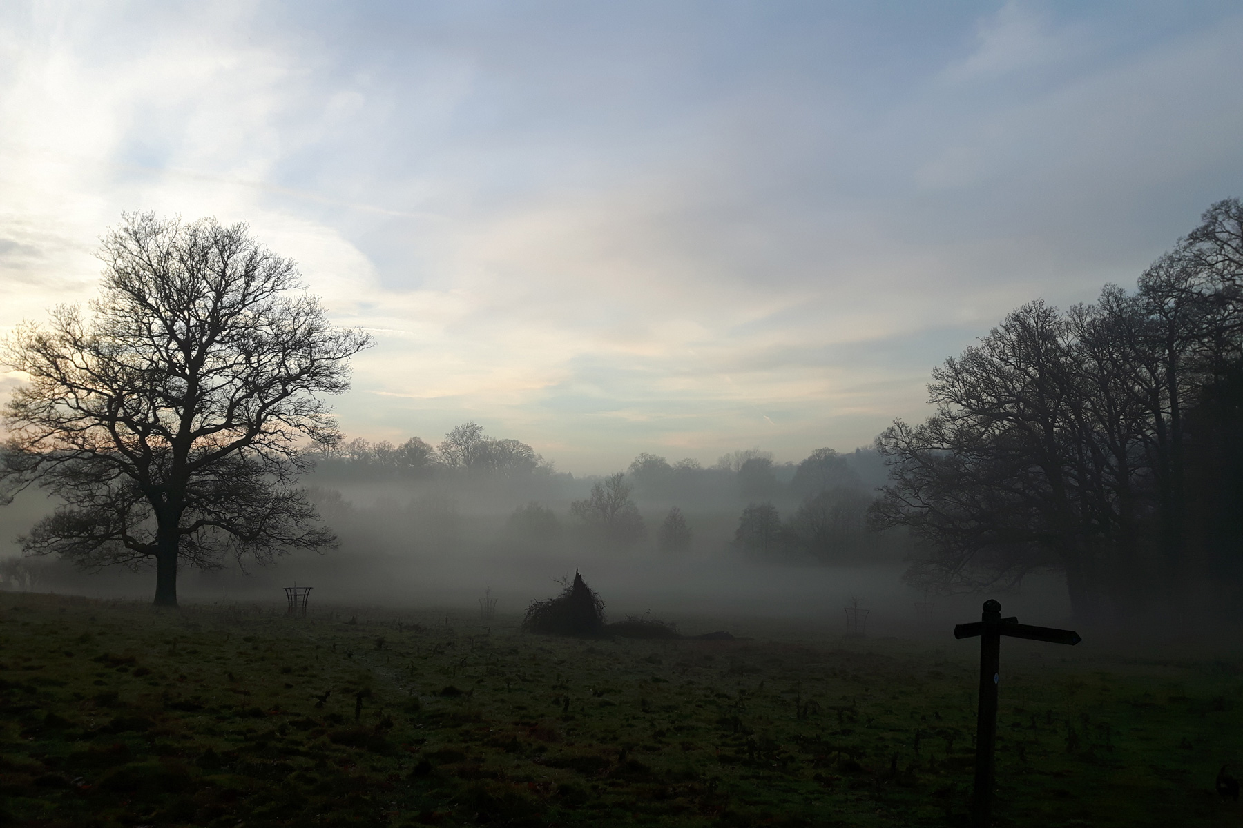 Scotney Estate in the Mist